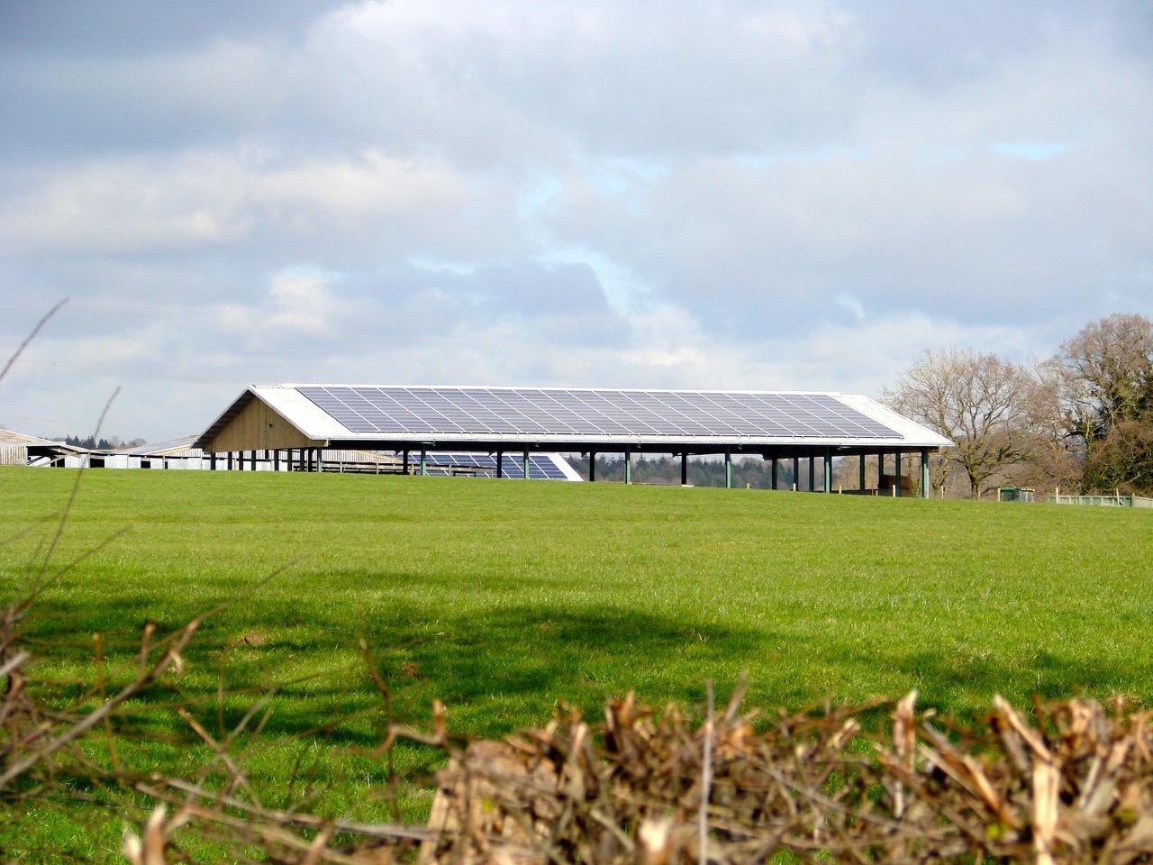 Morehouse Farm
